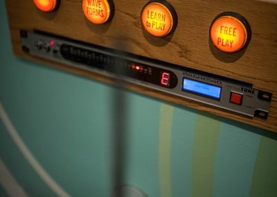 Theremin Moogseum Gallery